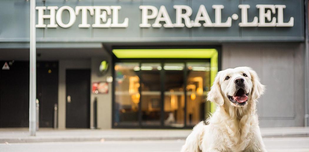 Pet Friendly - Hotel Paral·lel